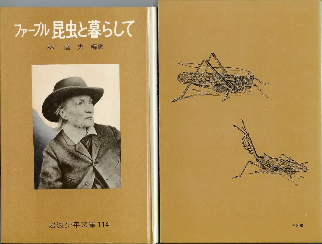 ファーブル 昆虫と暮らして 岩波少年文庫114