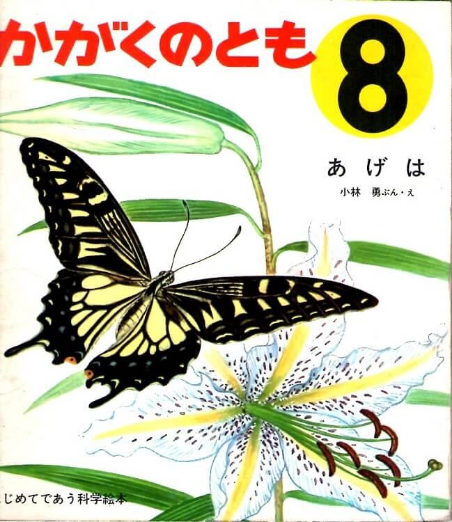 あげは かがくのとも 通巻5号 (1969年8月号) はじめてであう科学絵本