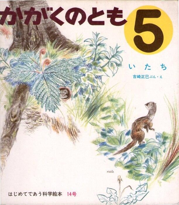 いたち かがくのとも 通巻14号 (1970年5月号) はじめてであう科学絵本 ※折り込みふろくあり