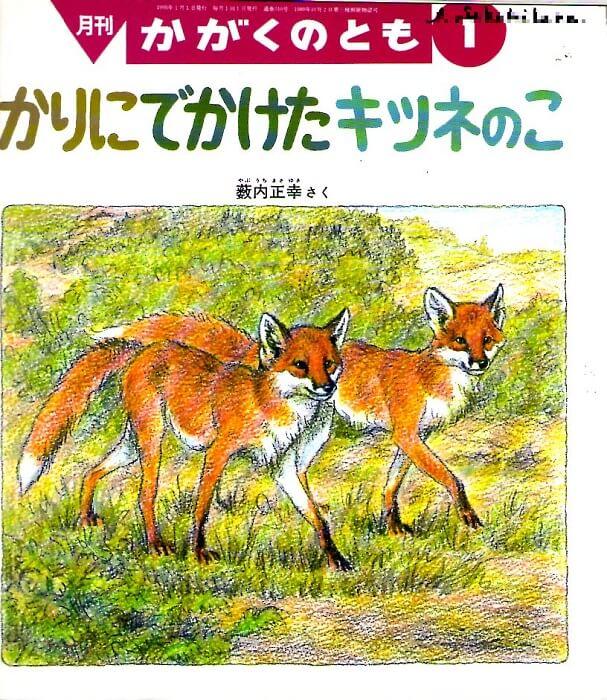 かりにでかけたキツネのこ かがくのとも 通巻310号 (1995年1月号) ※どうぶつタイムス70号あり