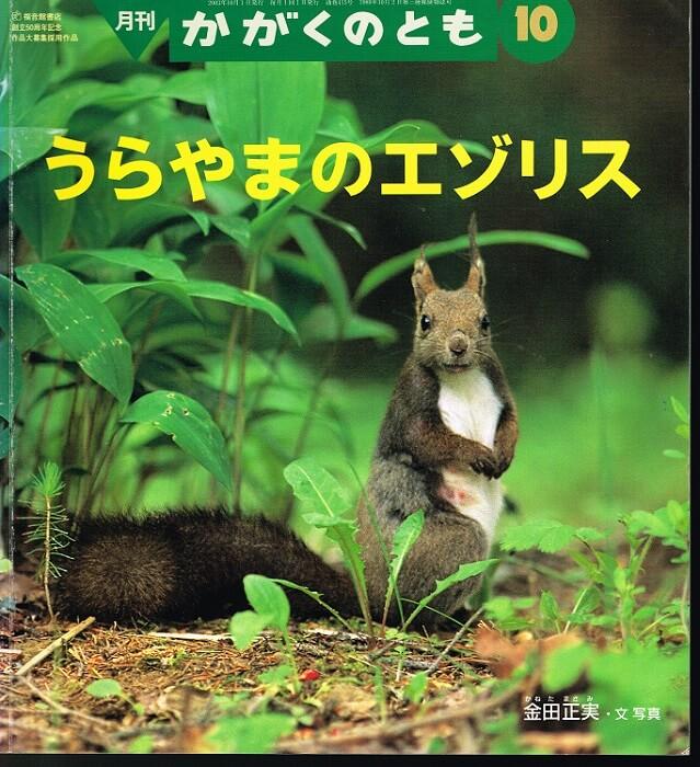うらやまのエゾリス かがくのとも 通巻415号 (2003年10月号)