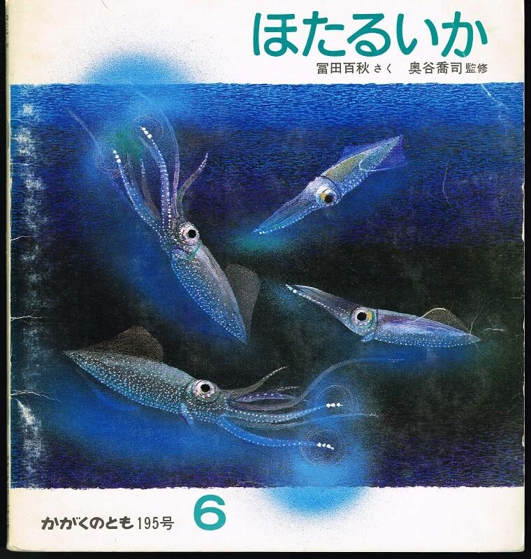 ほたるいか かがくのとも 通巻195号 (1985年6月号) ※折り込みふろくあり