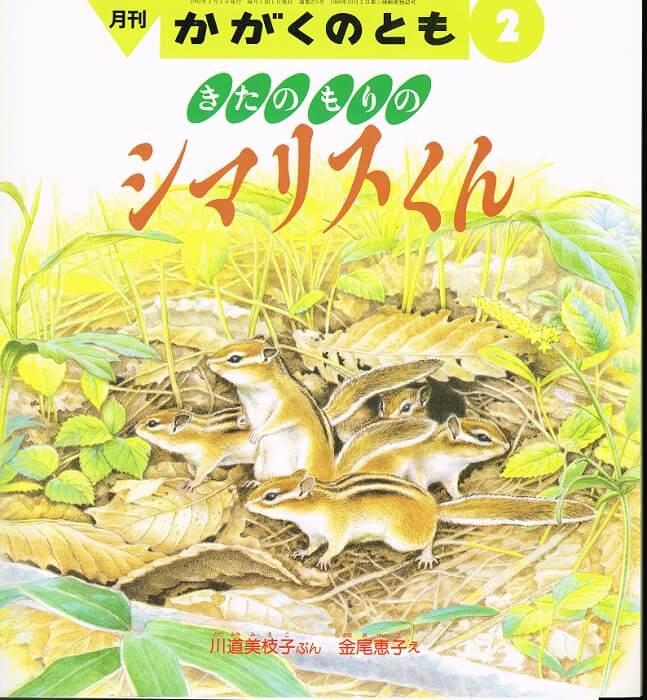 きたのもりの シマリスくん かがくのとも 通巻275号 (1992年2月号) ※折り込みふろくあり