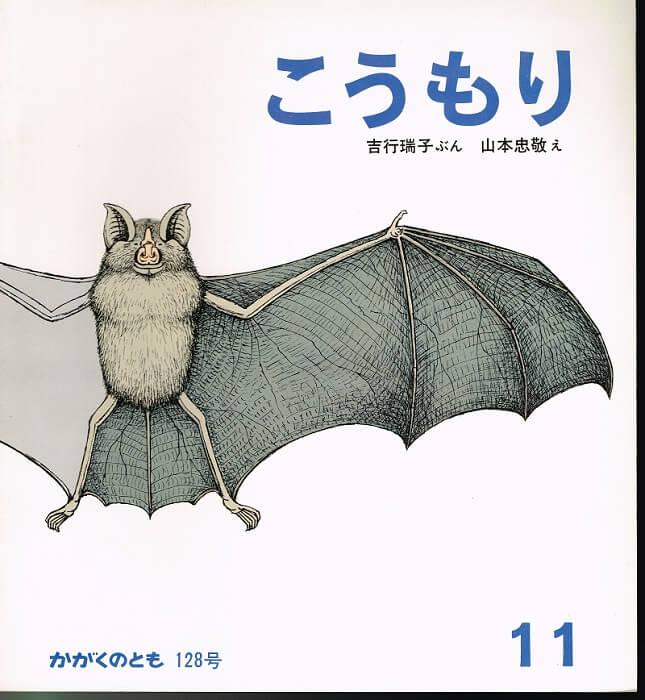 こうもり かがくのとも 通巻128号 (1979年11月号)