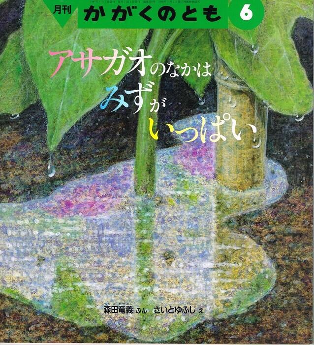 アサガオのなかはみずがいっぱい かがくのとも 通巻339号 (1997年6月号) ※折り込みふろくあり