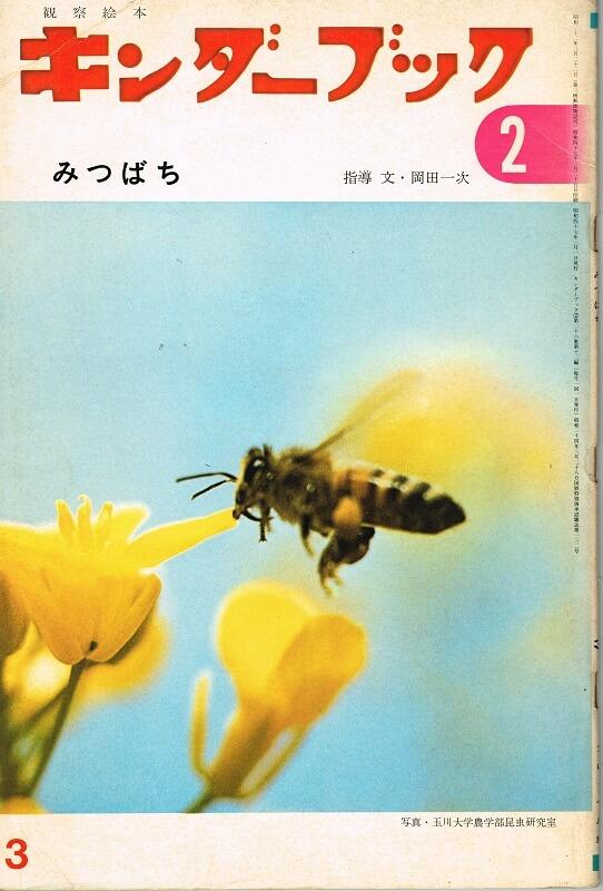 みつばち キンダーブック 観察絵本 (第26集12編 1972年3月号)